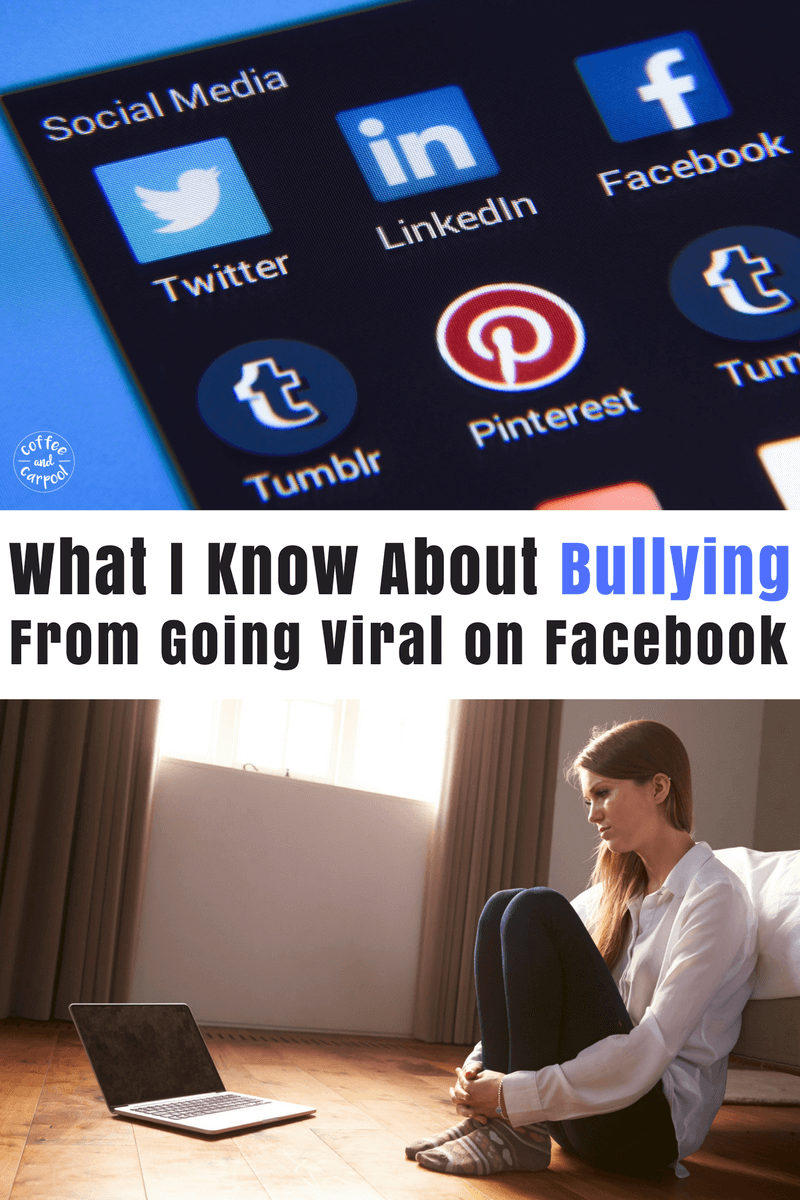 Cyberbullies in the forms of trolls are out in full force when something goes viral. Here's what I learned about bullying, cyber bullying, and bullying prevention from being cyberbullied on facebook. #bullyprevention #cyberbullying #bullies #trolls