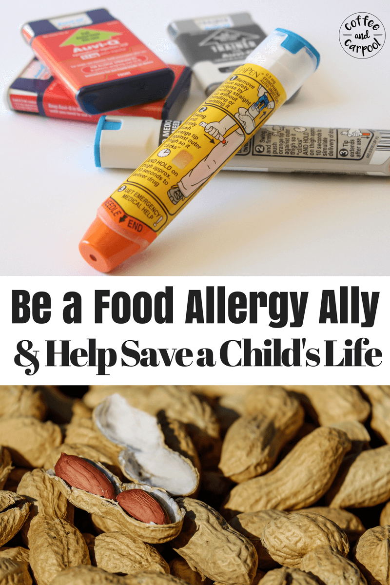Here's what you need to know to be a food allergy ally and help save a child's life. 1 in 13 kids has a food allergy. You know someone with a food allergy. You need to know this. #foodallergyawareness #foodallergies #foodallergy #epipens #foodallergyally #needtoknow