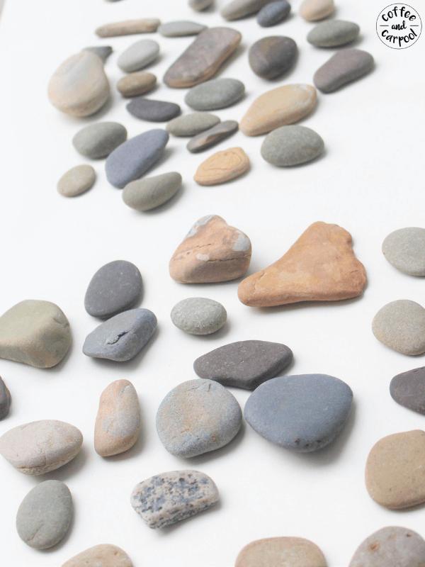 Kindness rocks gathering rocks #kindnessrocks