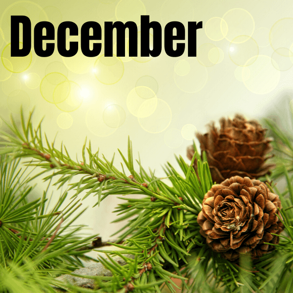 This December volunteer activity will help your kids focus on giving this winter holiday season rather than getting. It's the perfect December family volunteer activity.