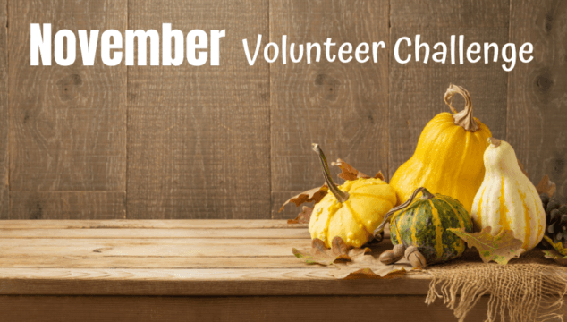 "Spread kindness as a family through this Family Volunteer Challenge for November by gathering items for ""blessing bags"" to donate them to people who need them."